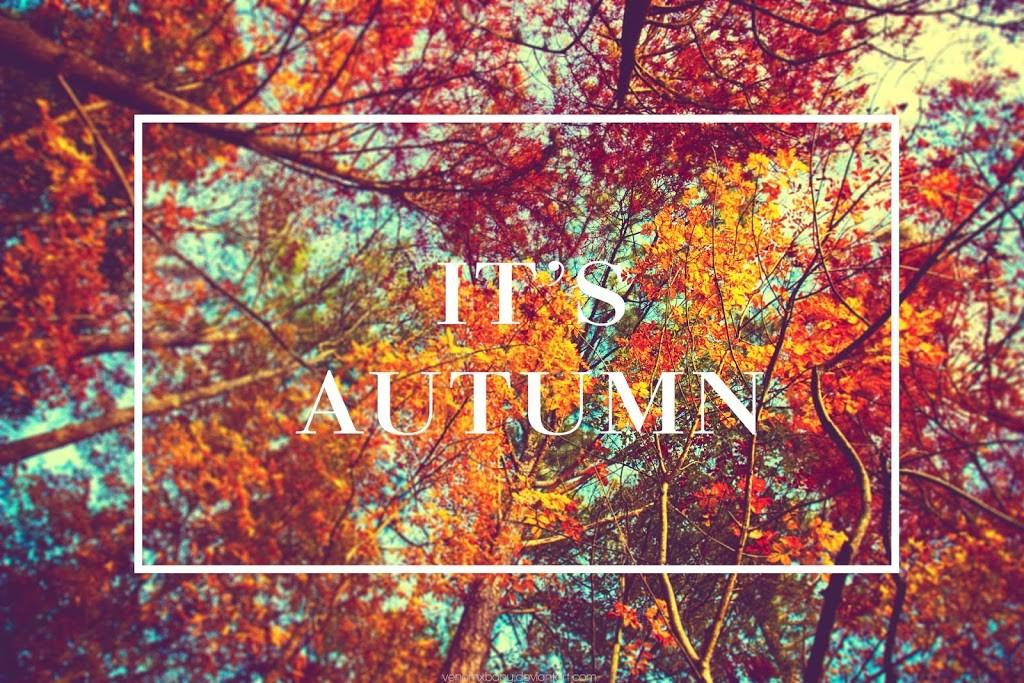 Fall Favorite Tag